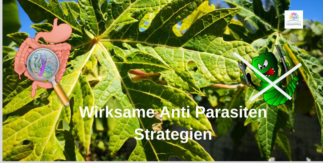 Wer viel Rohkost isst, braucht eine Anti-Parasiten Strategie