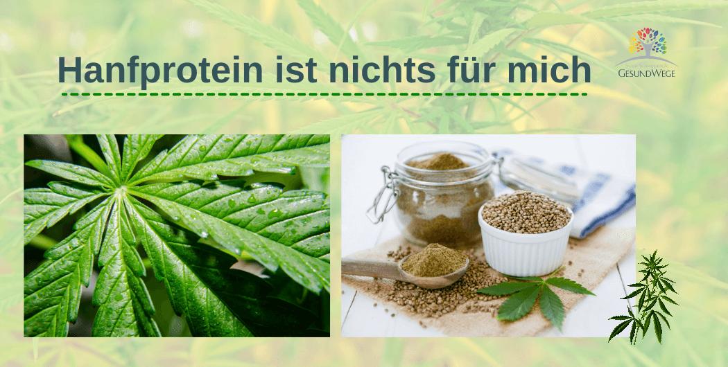 Pro´s und Con´s pflanzlicher Proteinpulver -Hanfprotein