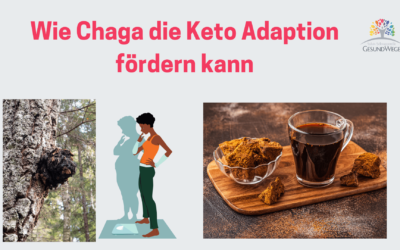Mit Chaga Tee die Keto Adaption fördern