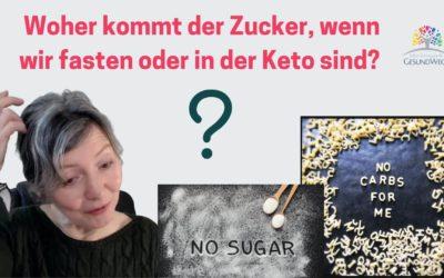 Woher kommt der Zucker für die Zellen, wenn wir fasten oder uns ketogen ernähren?