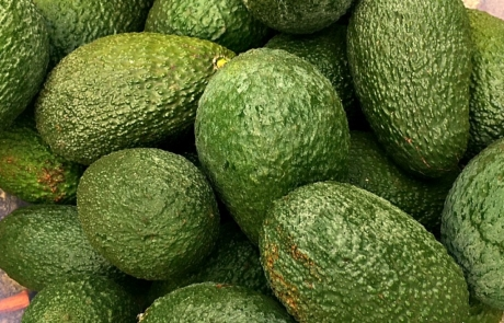 Zehn wichtige Inhaltsstoffe für den täglichen Genuss von Avocados