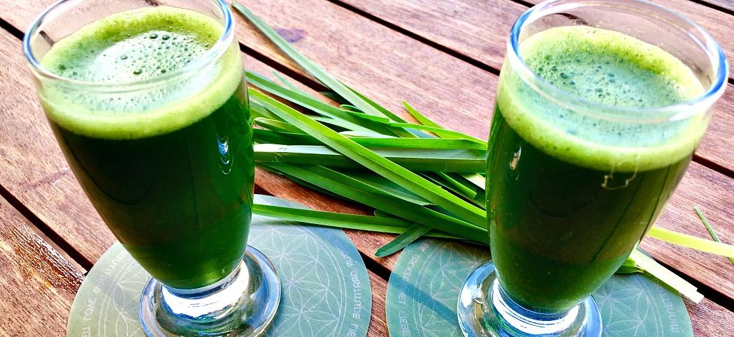 Wertvolles Nahrungs-Chlorophyll aus Hof und Garten