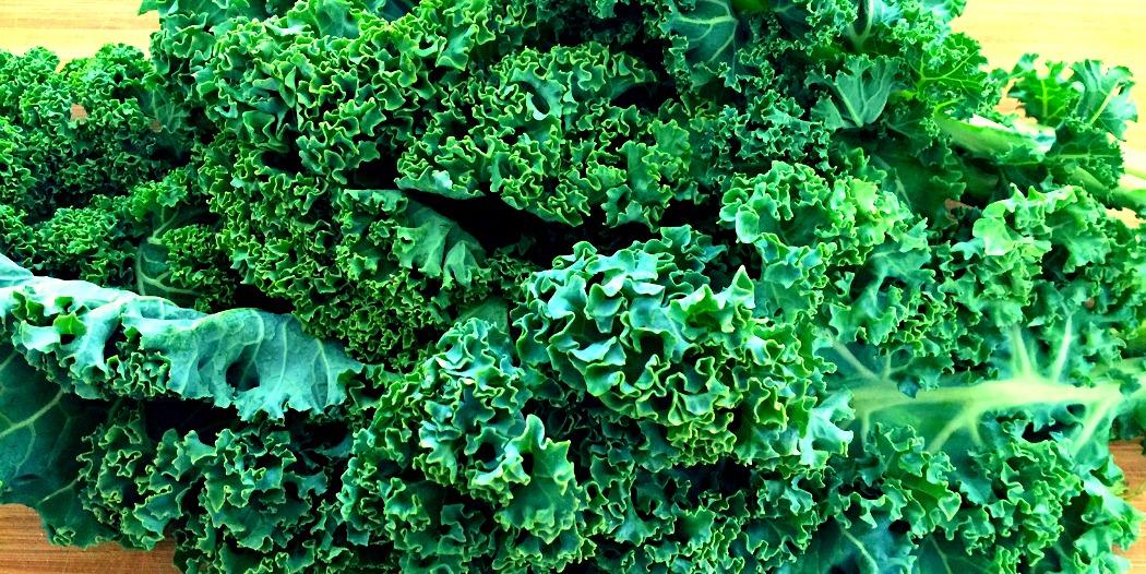 Mit Grünkohl gesund und mit guten Augen durch den Winter